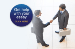 mba essay service review